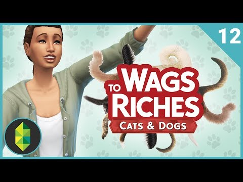 Wags to Riches - Part 12 (Sims 4 Cats & Dogs)