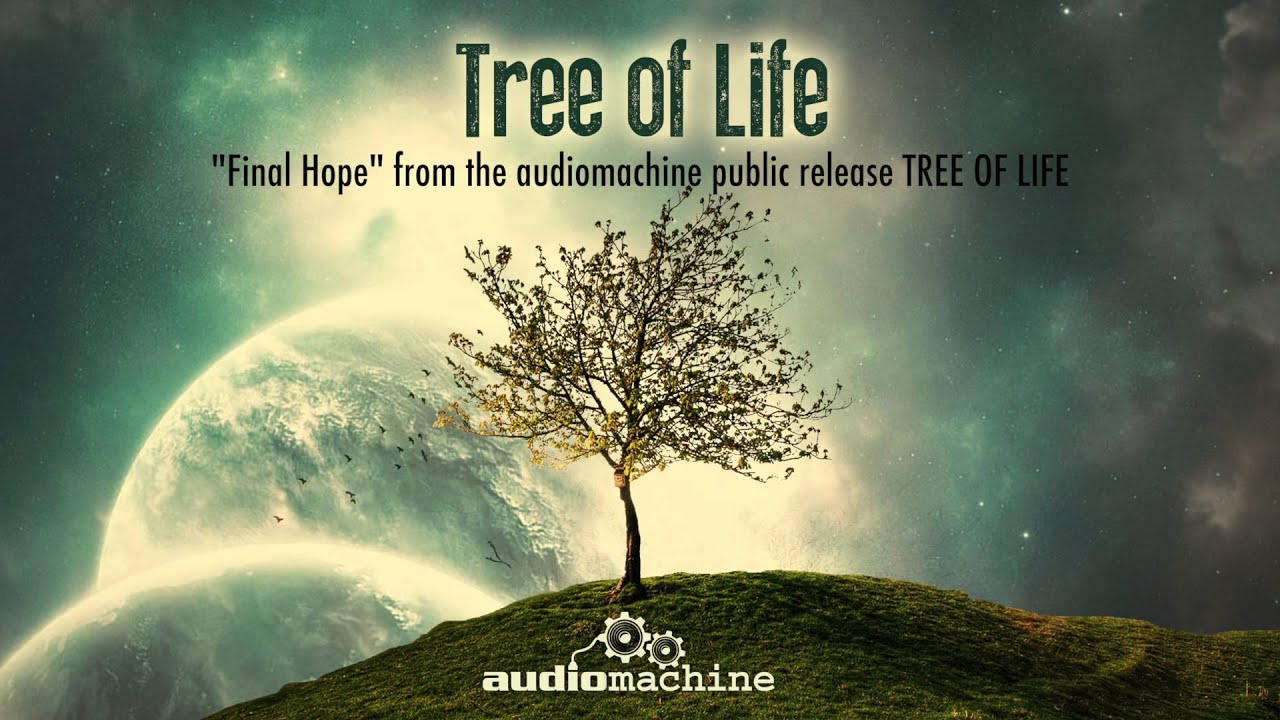 Short Life Quotes Wallpaper Audiomachine Final Hope Youtube