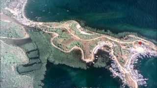 naga laut sulawesi