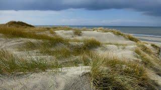 Wandern Texel - Rund um De Koog