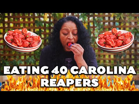 Bo and Jim - Woman Eats over 40 Carolina Reaper Peppers!