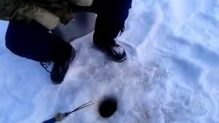 озеро эжереляй литва