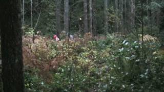 TFMS Cascade Range Project