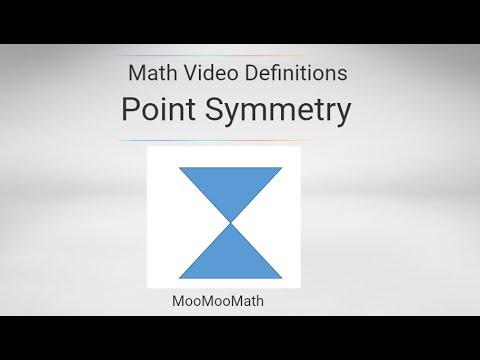 Point Symmetry Geometry