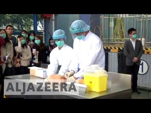 China probes bird flu transmission to humans