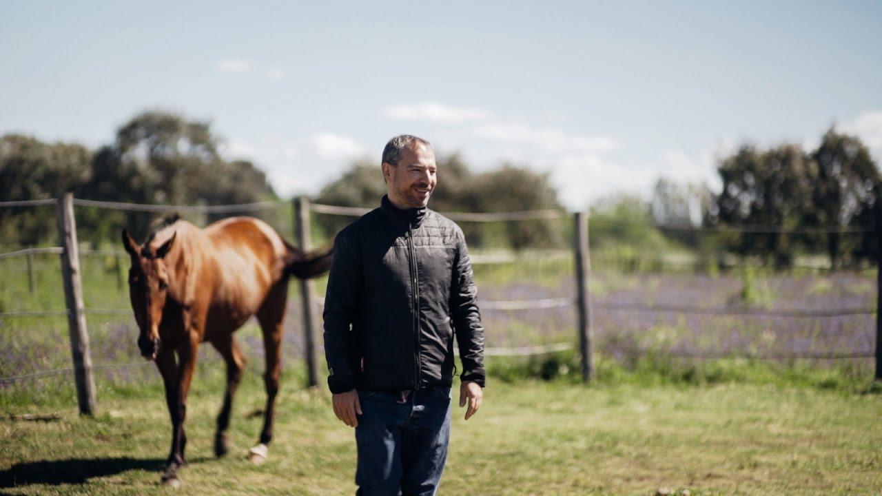 Inteligência emocional com cavalos