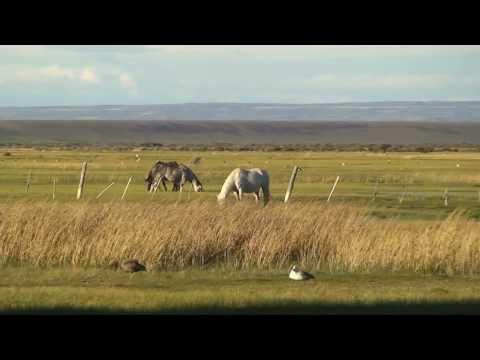 MotoQuest Patagonia: La Estancia Angostura