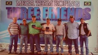 Mega Team Roping Three Friends 2014 Highlights