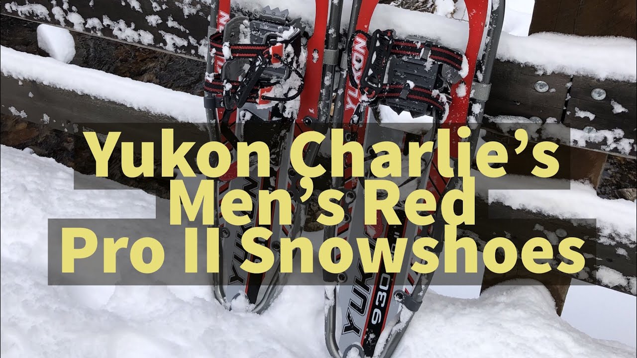 Yukon Charlie snowshoes Red pro 2, review up white pine trail