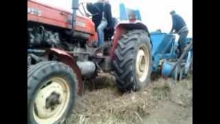 Ciężki zbiór ziemniaków kombajnem Bolko 2013 Radzio w akcji :D