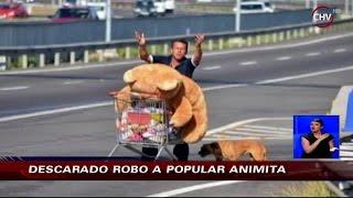 Roban peluches en popular animita de la Autopista del Sol - CHV Noticias