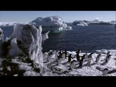 Under Antarctic Ice Documentary