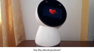 Review What Can Jibo Do Today Release Version 0 6 0