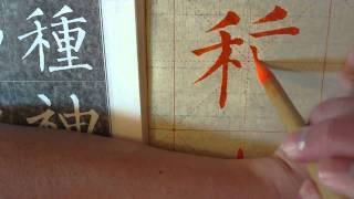 Seed / To Plant 種 in Mandarin Chinese Kaishu Calligraphy