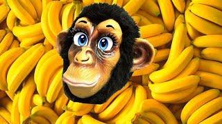 Monkey Banana Dance | Baby Monkey Animals | Dance Along | Eva Songs