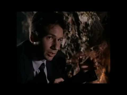 The X Files Behind The Truth: Squeeze and Tooms