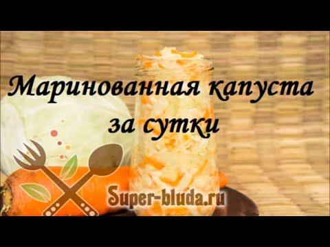 Маринованная капуста за сутки, рецепт с фото пошагово. Суточная капуста в банке простой рецепт