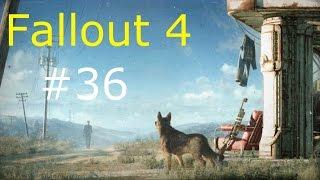 Fallout 4 ч.36 Роковые яйца
