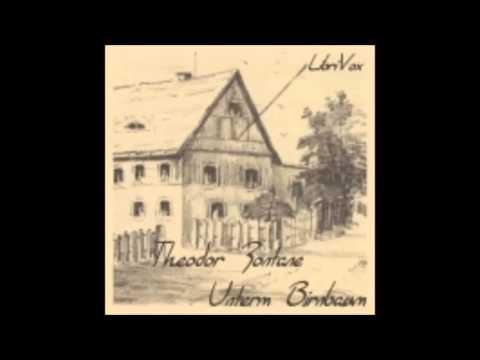 Unterm Birnbaum - Theodor Fontane ( Hörbuch )