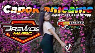 DJ CAPOK AMEAME FEAT 69 PROJECT // super mega bass horegg by. brewog music