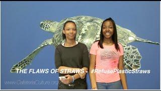 The Flaws of Straws - #RefusePlasticStraws