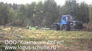 Расчистка залежного поля по бывшему лесоповалу (экстрим)
