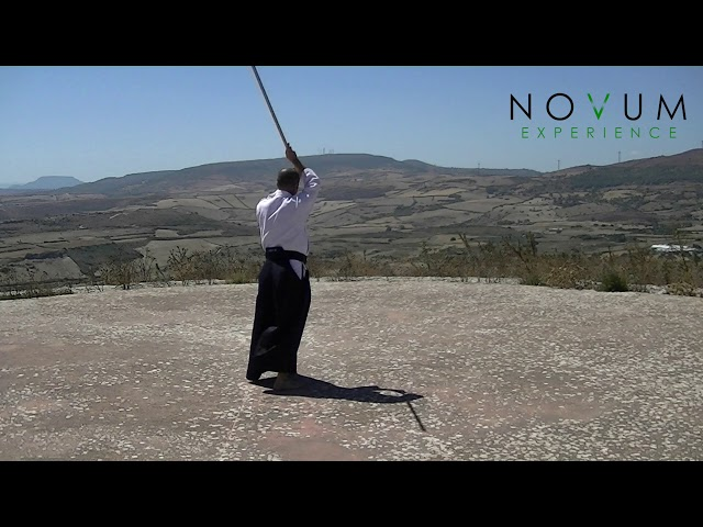 07 Renzoku Uchikomi-Aikido Novum Experience-Jo Suburi Nijuppon - Uchikomi Gohon-連続打ち込み-杖素振り20本打ち込み5本