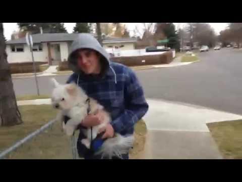 Baby Girl - McK00L $.$ [Music Video]