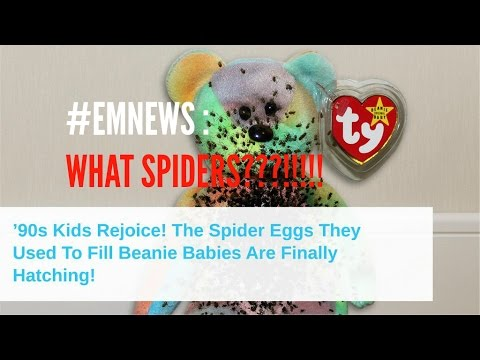826137e9856 EMNEWS   90 s Baby Beanies Hatching Spider Eggs!  - YouTube