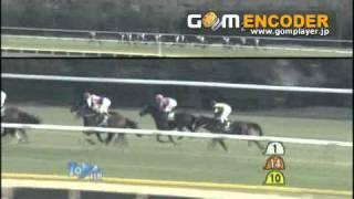 2011年 第61回ダイヤモンドステークス(GⅢ)   コスモメドウ