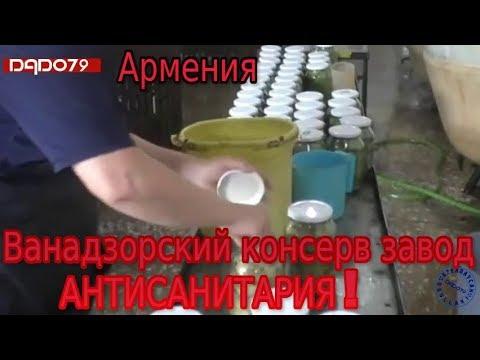 Армения. Ванадзорский консерв завод. АНТИСАНИТАРИЯ!