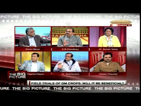 The Big Picture - Field trials of GM crops: Will they be ben