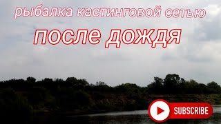 Рыбалка кастинговой сетью После дождя Алтайский край река Чумыш