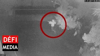Vol de bétail filmé : deux hommes et une femme démasqués