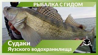 Рыбалка с гидом на Яузском водохранилище Рыбалка осень 2019