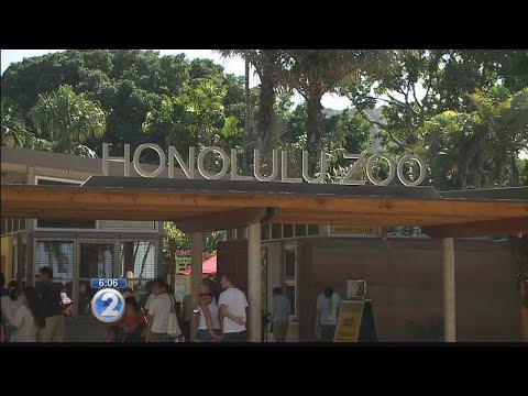 Longtime employee promoted to director of Honolulu Zoo