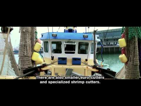 The Story Of Dutch Fish - Men Of The Sea