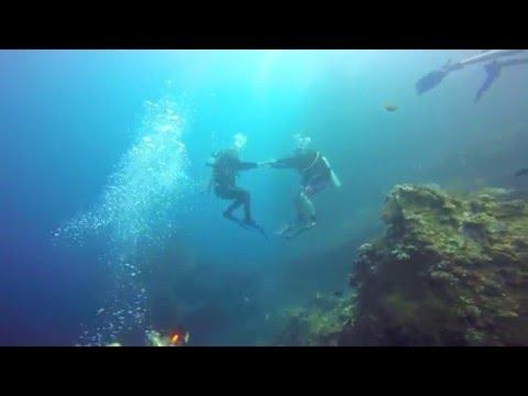 Dive & Jive with Ceroc Singapore