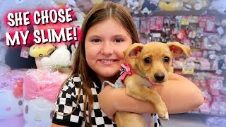 PUPPY'S 1ST TIME AT TOKYO WORLD & UPDATE ON GIZMO!