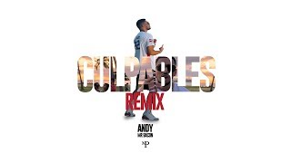 ANDY x ANUEL AA - CULPABLES (Mr Bacon Remix)