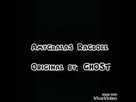 Amygdalas Ragdoll Instrumental