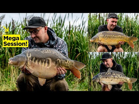 Conquer A Pressured Day Ticket Venue With Andy Parr! | Carp Fishing Advice
