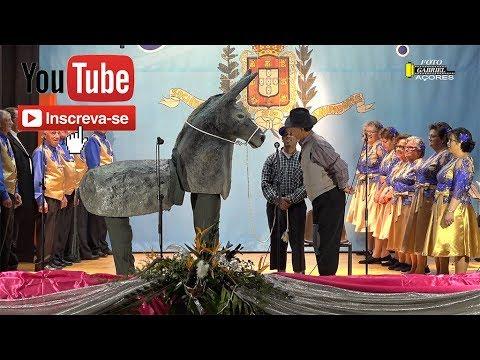 CARNAVAL SÉNIOR 2019( AGUENTA-TE MEU PADRINHO) CINCO RIBEIRAS