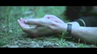 Breathe In 2013 Full Movie Trailer #1 Stars: Felicity Jones & Guy Pearce