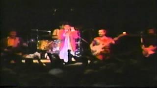 Punks & Poseurs 1985 [06]. The Dickies - Walk Like an Egg