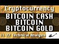 BITCOIN CASH : BITCOIN : BITCOIN GOLD Update 11-22 CryptoCurrency Technical Analysis