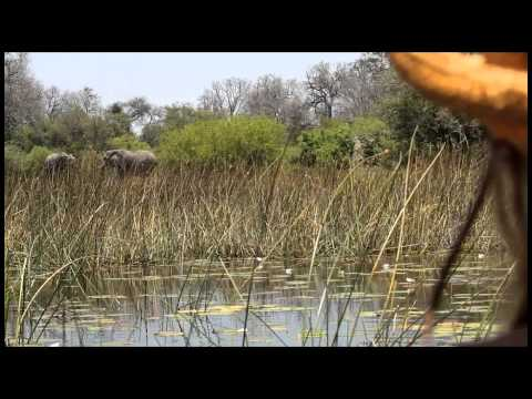 A Day in the Life of Botswana from Red Savannah