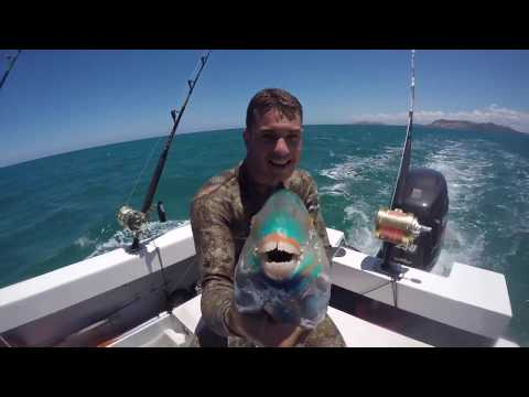 spearfishing new caledonia / chasse sous marine nouvelle calédonie 3