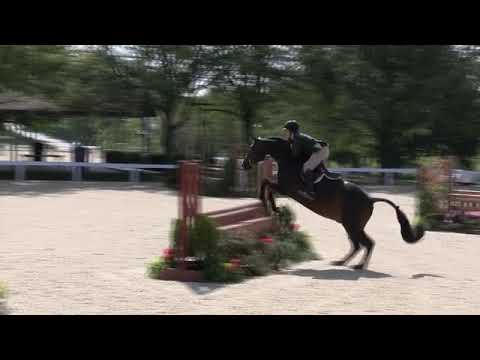 Video of BELGRAVIA ridden by LINDSAY MAXWELL from Net!