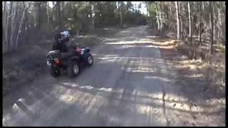 Dirt Bug Offroading